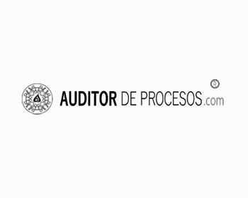 NydSigel_Auditor_de_procesos_B_N